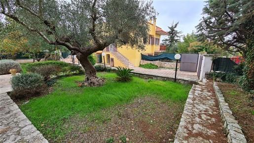 Appartamento In Villa, Al Primo Piano 3 Vani, Veranda e Giardino.